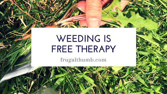 Weeding is free therapy