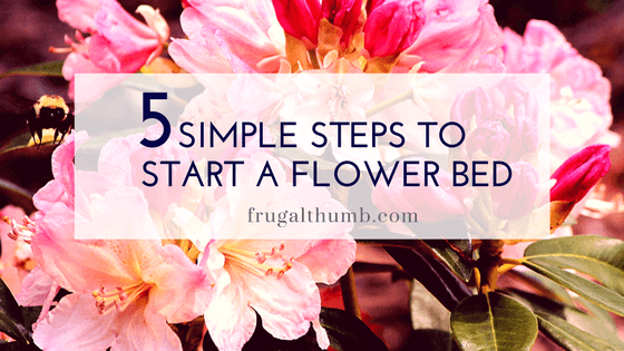 Start a Flower Bed