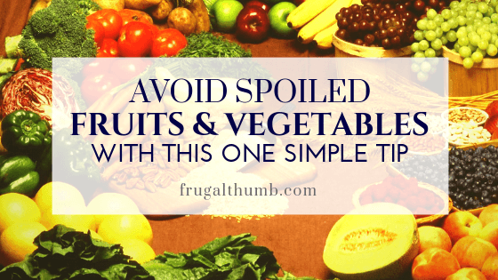 Never Have Spoiled Fruits and Vegetables in Your Home Again